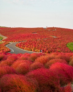 amazing-places-to-see-before-you-die-16