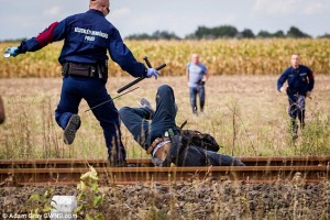 2C13557600000578-3226888-Head_over_heels_A_migrant_falls_face_first_between_railway_track-a-4_1441747847609