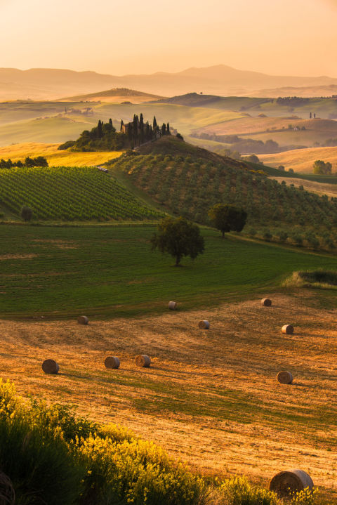 gallery-1449606331-tuscanyfarm-getty
