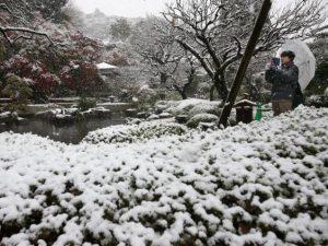 japan-snow-4