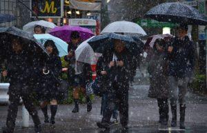 tokyo-snowfall